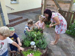 Wir pflegen unseren Kräutergarten